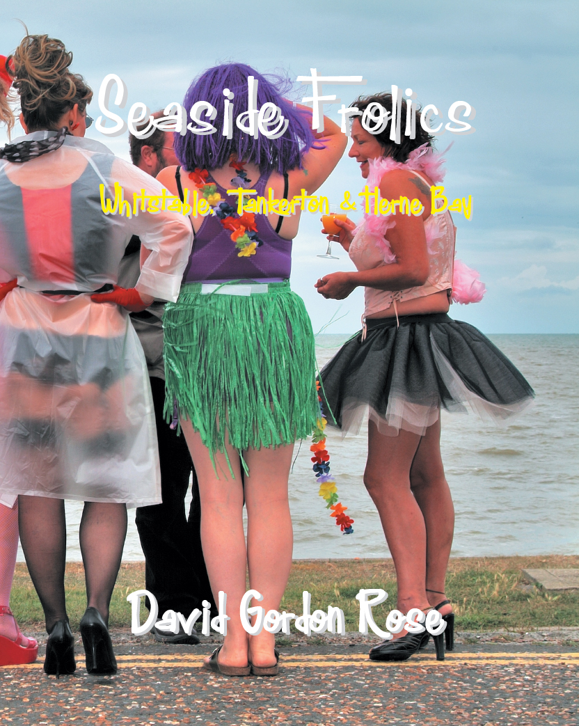 Seaside Frolics FRONT COVER 2nd ed.